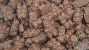 Bulk Chocolate Gummy Bears