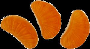 Bulk Gummy Oranges
