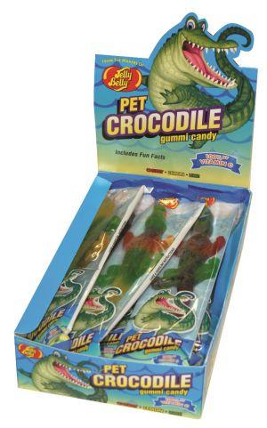 Pet Crocodile