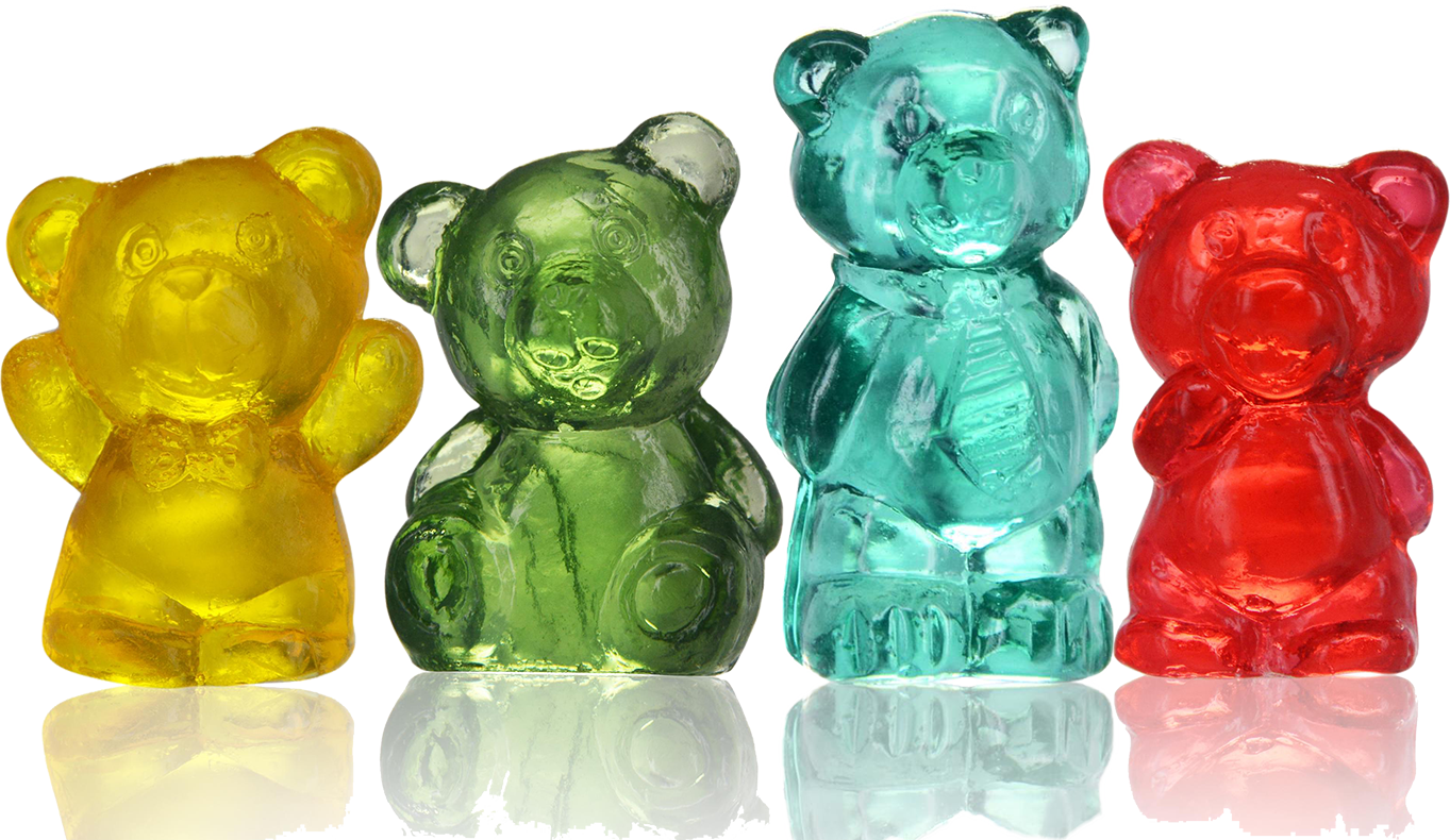 4D Bear Buddies